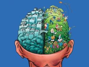 06-cerebro-lado-izquierdo